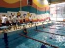 basen zwody_18