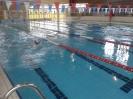 Mistrzostwa Wielkopolski w Pływaniu
